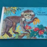 PRIN ȚĂRI ÎNDEPĂRTATE/ COMPLET CARTONATĂ/1975 - Carte de povesti