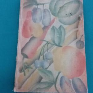 DAS WENDEPUNKT KOCHBUCH/ REȚETE DE BAZĂ PT. BUCĂTĂRIE/ LIMBA GERMANĂ/1932