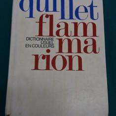 DICTIONNAIRE USUEL QUILLET FLAMMARION /PAR LE TEXTE ET PAR L'IMAGE/1973 - Dictionar ilustrat