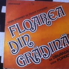 Floarea din gradina Darvareanu Popescu tineri Interpreti Muzica Populara electrecord vinyl, VINIL