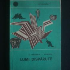 N. MESZAROS, I. PETRESCU - LUMI DISPARUTE