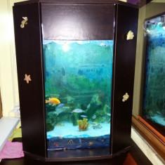 Vand Acvariu Aquael incorporat cu pesti
