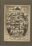 Emil Fischer Sibiu, fotografie Scoala cavalerie: Promotia 1935 instructori