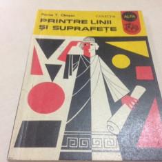 Florica T. Câmpan, PRINTRE LINII SI SUPRAFETE - Carte Matematica