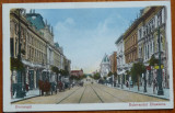 Bucuresti , Bulevardul Elisabeta , animatie , necirculata , inceput de secol 20, Printata