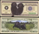 !!! SUA = FANTASY NOTE = BLACK  LABRADOR  - 2006 - UNC  /  SERIA  CAINI , WOOF