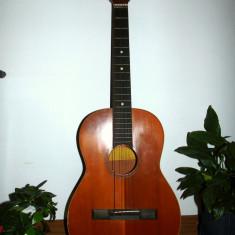 Chitara acustica Hora Reghin