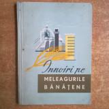 Innoiri pe meleagurile banatene - Carte Geografie