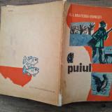 Puiul - Al. I. Bratescu-Voinesti/ ilustratii Noel Roni - Carte de povesti