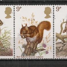 Anglia.1977 Animale salbatice-streif CF.481 - Timbre straine, Nestampilat