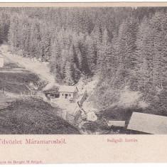 #1775- Romania, Maramures, carte postala necirculata: Izvorul Suliguli - Carte Postala Maramures pana la 1904, Fotografie
