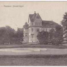 #1797- Romania, Temesvar, Timisoara c.p. necirculata: Parcul Ferencz Jozsef - Carte Postala Banat 1904-1918, Fotografie