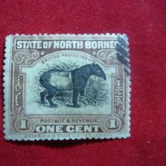 Timbru 1 Cent -Fauna- Tapir Borneo de Nord -Protectorat Britanic ,1909 stampilat