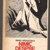 (C7031) BANU RADULESCU - NIMIC DESPRE FERICIRE - Roman, Anul publicarii: 1984