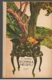 (C7035) GEORGE CALINESCU - SCRINUL NEGRU, Alta editura, 1987