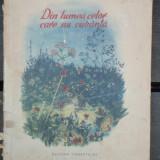 DIN LUMEA CELOR CARE NU CUVANTA - EMIL GARLEANU - Carte de povesti