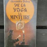 DE LA YOGA LA MINTUIRE - ALEXANDRU DOBOS - Carte paranormal
