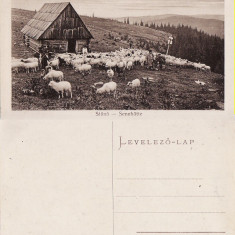 Sibiu, Hermannstadt - Stana, tipuri