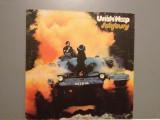 URIAH HEEP - SALSBURY (1970 /ISLAND REC /HOLLAND) - Vinil /Impecabil/Vinyl (NM), universal records