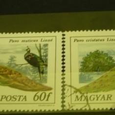 UNGARIA 1976 – PASARI DECORATIVE, PAUNI, timbre stampilate AK16 - Timbre straine