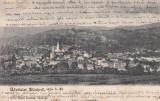 SALUTARI DIN  ZALAU , VEDERE GENERALA  , CLASICA , CIRCULATA 1904 ED. SERES SAMU, Printata