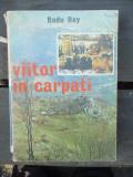 VIITOR IN CARPATI de RADU REY