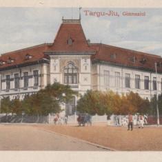 TARGU JIU, GIMNAZIUL, - Carte Postala Oltenia 1904-1918, Necirculata, Printata
