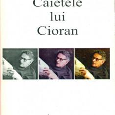 Caietele lui Cioran - Livius Ciocarlie