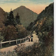 SALUTARI DIN GORJ, VALEA JIULUI - Carte Postala Oltenia 1904-1918, Targu Jiu, Necirculata, Printata