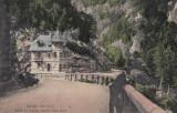 SALUTARI DIN GORJ , POSITIA CU CANTONUL PLASTINA VALEA JIULUI, Targu Jiu, Necirculata, Printata