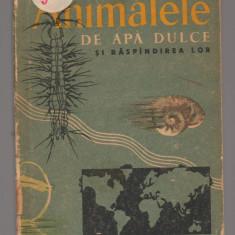 (C6876) G.D. VASILIU - ANIMALELE DE APA DULCE SI RASPANDIREA LOR (ANIMALE) - Carte Zoologie