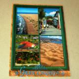 Papagal - pitoresc - litoral - Spania - 2+1 gratis - RBK17416 - Carte postala tematica, Necirculata, Fotografie