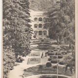 Bnk cp Baile Herculane - Parcul - circulata 1951 - Carte Postala Banat dupa 1918, Printata