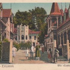 VALCELE, TRANSILVANIA, VILA ECATERINA - Carte Postala Transilvania dupa 1918, Necirculata, Printata