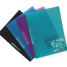 Dosar plastic cu clip Vivid Colors A4, set 5 - Mapa Papetarie