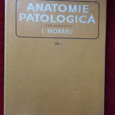 ANATOMIE PATOLOGICA - MORARU -VOL 1 ,STARE FOARTE BUNA .