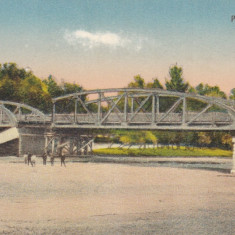 BALS, PODUL OLTETI - Carte Postala Oltenia dupa 1918, Necirculata, Printata
