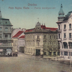 ORADEA, PIATA REGINA MARIA, BANCA COMERCIALA, MAGAZINE, CIRCULATA 1926 - Carte Postala Crisana dupa 1918, Printata