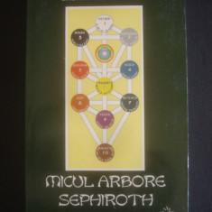 CRISTIAN TIBERIU POPESCU - MICUL ARBORE SEPHIROTH - Roman, Anul publicarii: 2000