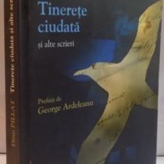 TINERETE CIUDATA SI ALTE SCRIERI de DINU PILLAT, 2011 - Roman, Humanitas
