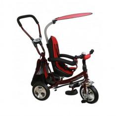 Tricicleta Copii Cu Scaun Reversibil Baby Mix Safari Bordo