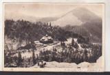Bnk cp Muntii Bistritei Rarau - Cabana CCS - uzata 1957, Circulata, Printata