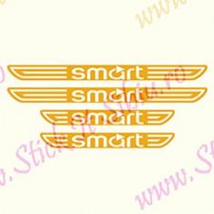 Set Praguri Smart-Model 1_Tuning Auto_Cod: PRAG-013 - Praguri tuning