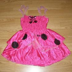 Costum carnaval serbare buburuza barbie pentru copii de 4-5-6 ani - Costum Halloween, Marime: Masura unica, Culoare: Din imagine