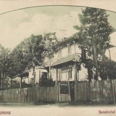 BAILE GOVORA, SANATORIUL OFITERILOR CIRCULATA 1929, FOTO REGAL M. PANDELESCU - Carte Postala Oltenia dupa 1918, Printata