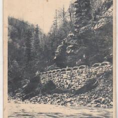 bnk cp Valea Jiului - Vedere - circulata