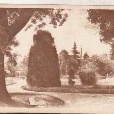 bnk cp Ramnicu Valcea - Vedere din parc - necirculata