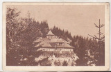 bnk cp Campulung Moldovenesc - Cabana Deia - circulata 1959 - marca fixa