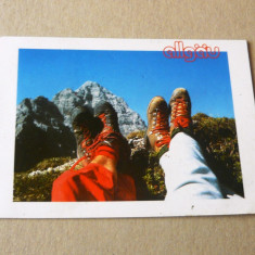 Bocanci - munte - natura - Germania - 2+1 gratis - RBK17444 - Carte postala tematica, Necirculata, Fotografie