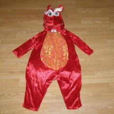 Costum carnaval serbare dragon pentru copii de 2-3 ani - Costum Halloween, Marime: Masura unica, Culoare: Din imagine